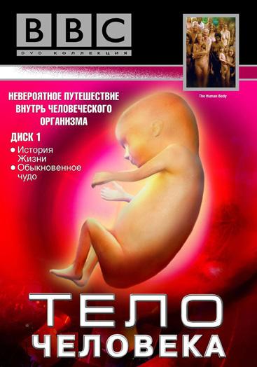Bbc фильмы про человека секс
