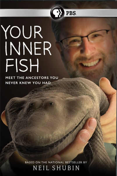 Внутренняя рыбка