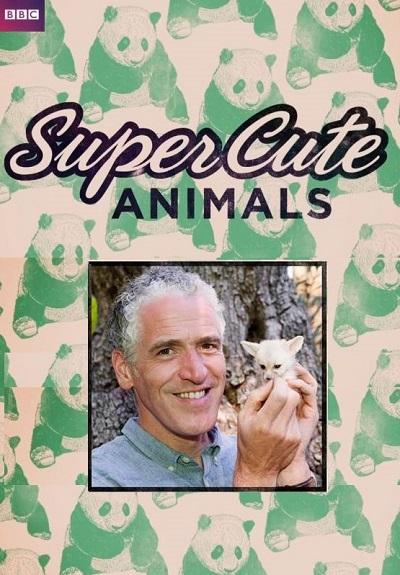 BBC. Самые милые животные