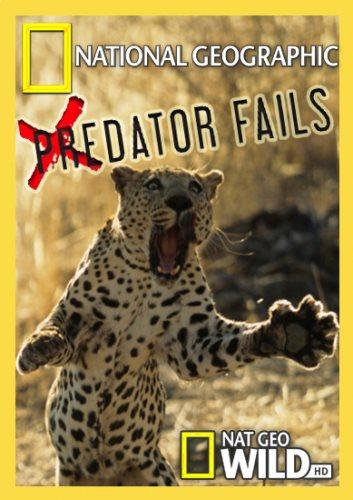 Неудачи хищников