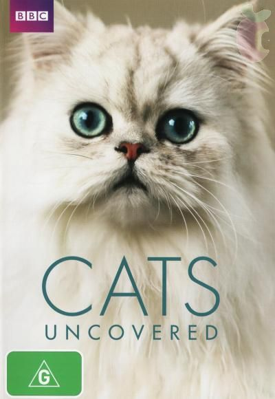 BBC. Кошачьи тайны
