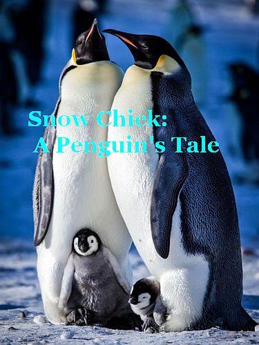 Заснеженный щенок иначе История одного пингвина
